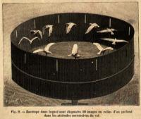 17-1887-a-napoli-zootropio-tridimensionale-di-marey