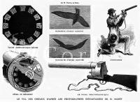 8-marey-fucile-fotografico
