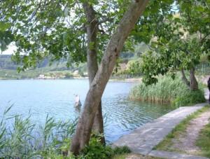Lago d'Averno Campania