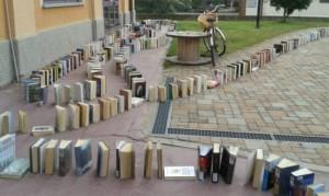 Libri domino
