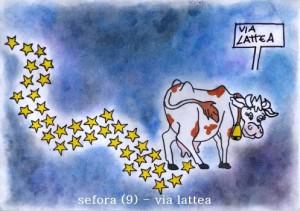 concorso-2013-sefora_9_la-via-lattea_bis