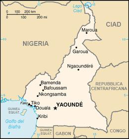 Camerunit