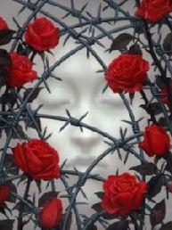 rose_con_spine.jpg_480_480_0_64000_0_1_0
