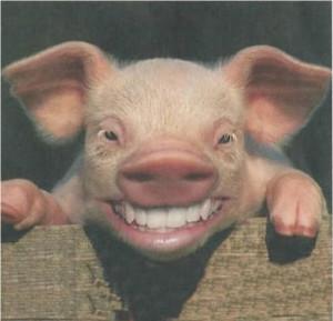 il-sorriso-fa-bene-anche-agli-an-2