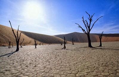 desertificazione-1