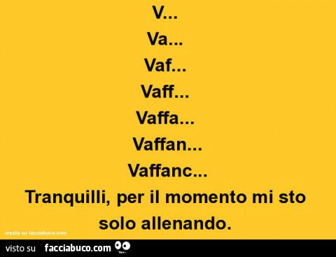 5732380267-v-va-vaf-vaff-vaffa-vaffan-vaffanc-tranquilli-per-il-momento-mi-sto-solo_a