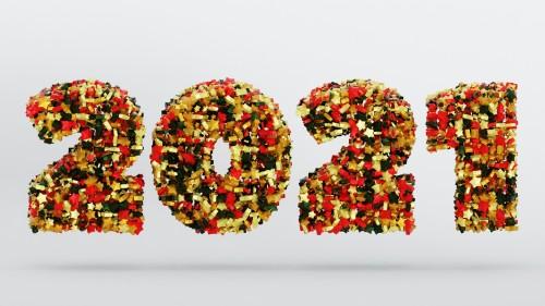 new-year-2021-4801925_1920